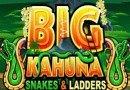 Big Kahuna Snakes Ladders Slot
