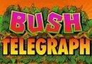 Bush Telegraph è la Slot del Mese